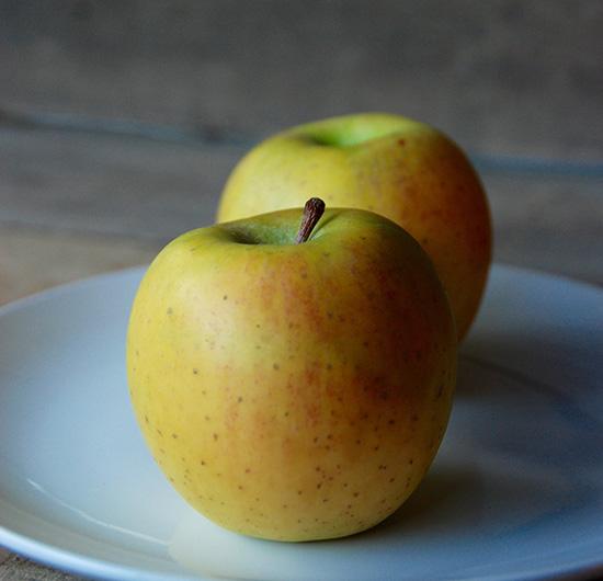 Apples – Fishkill Farms