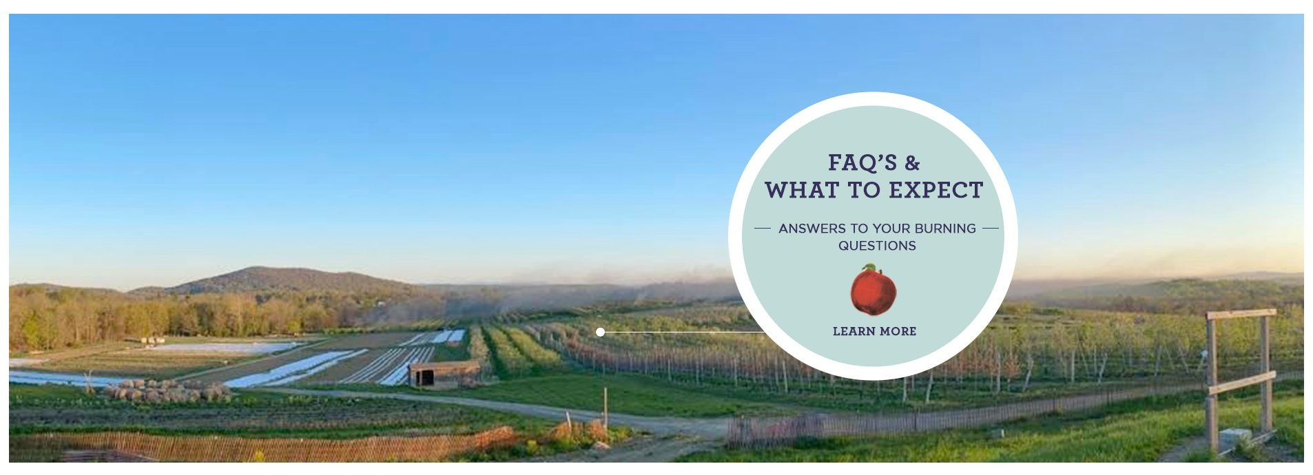 Click to view FAQ's & What to Expect Page