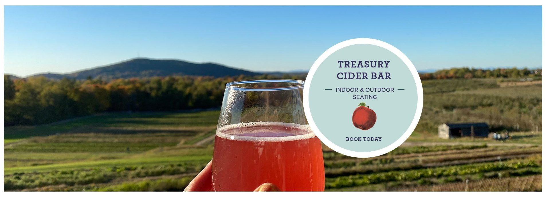 Treasury Cider Bar. Indoor & Outdoor Seating Available. Click to book a reservation.